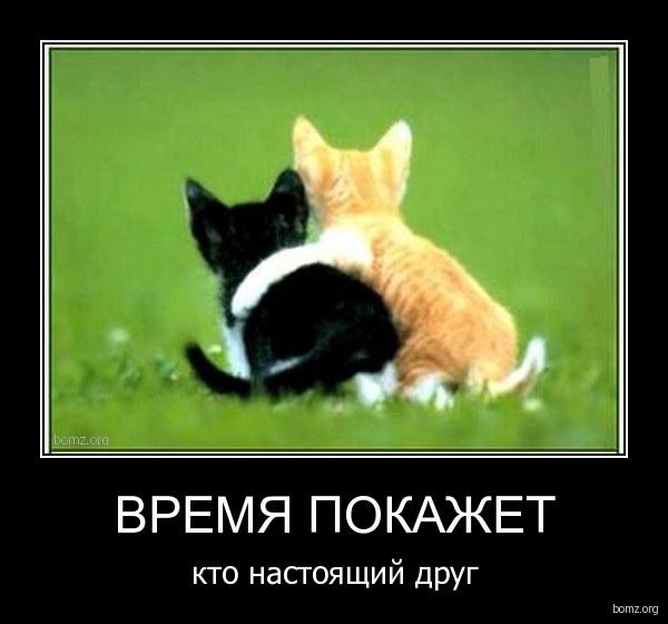 Друг познаётся в твоей беде, а ты его в его счастье. -Margaritova.ru