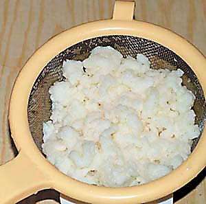 чудо грибок индийских йогов инструкция - фото 4